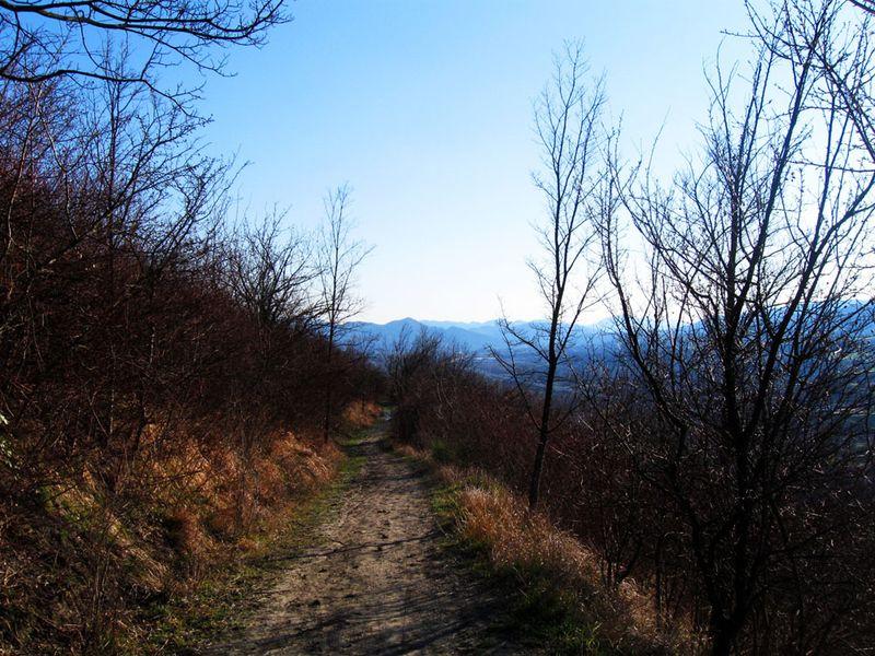 Trail2_